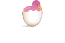 Flamingo Island Preschool Richardson Texas